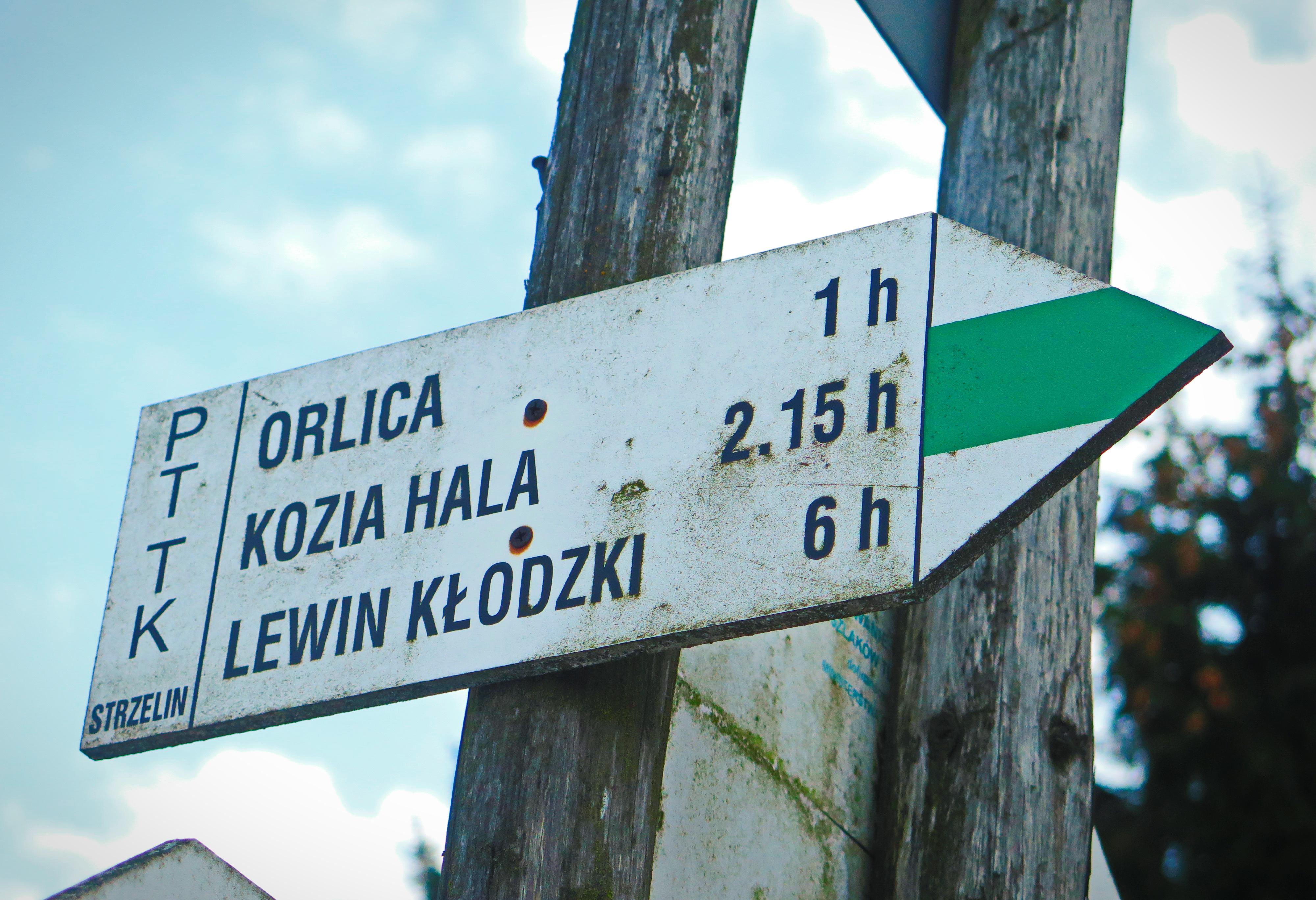 znak szlaku Orlica