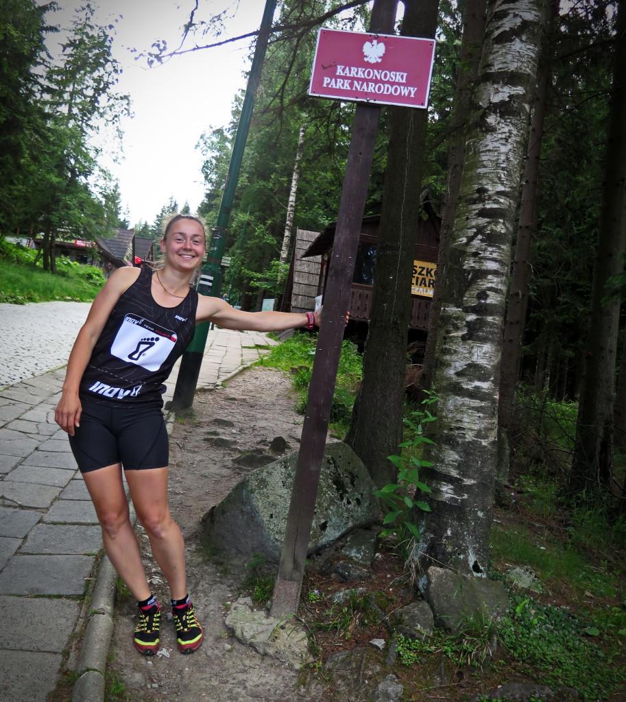 karkonoski park narodowy - śnieżka viola piatoruskaya