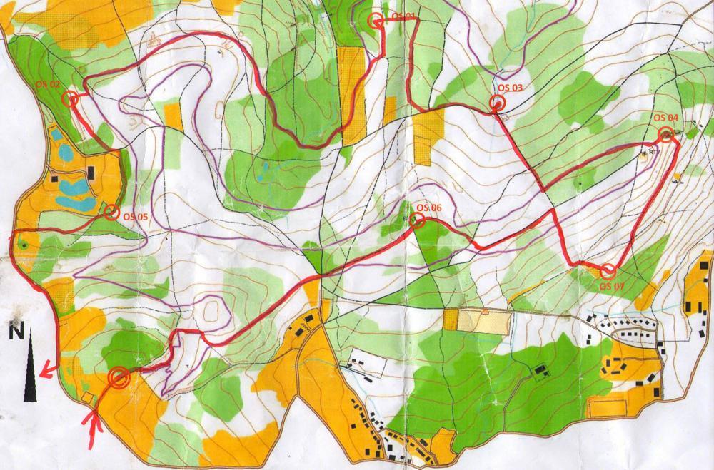 Mapa do biegów na orientację z naniesioną trasą.