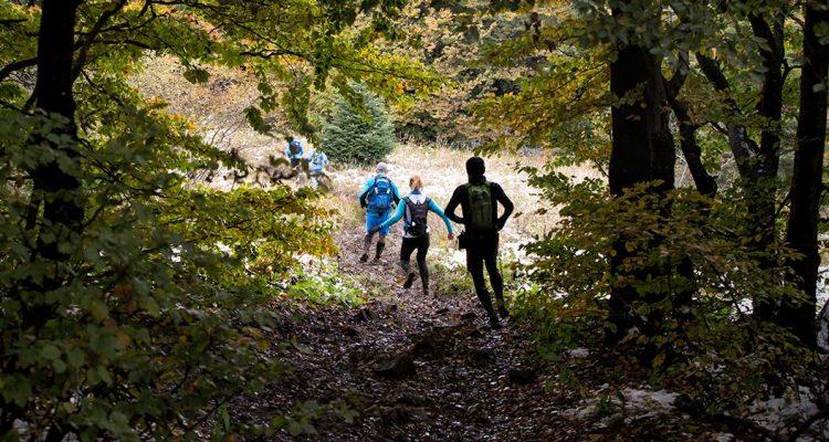 Zbieg na Ultra Maratonie Bieszczadzkim. Fot. Jola Błasiak-Wielgus