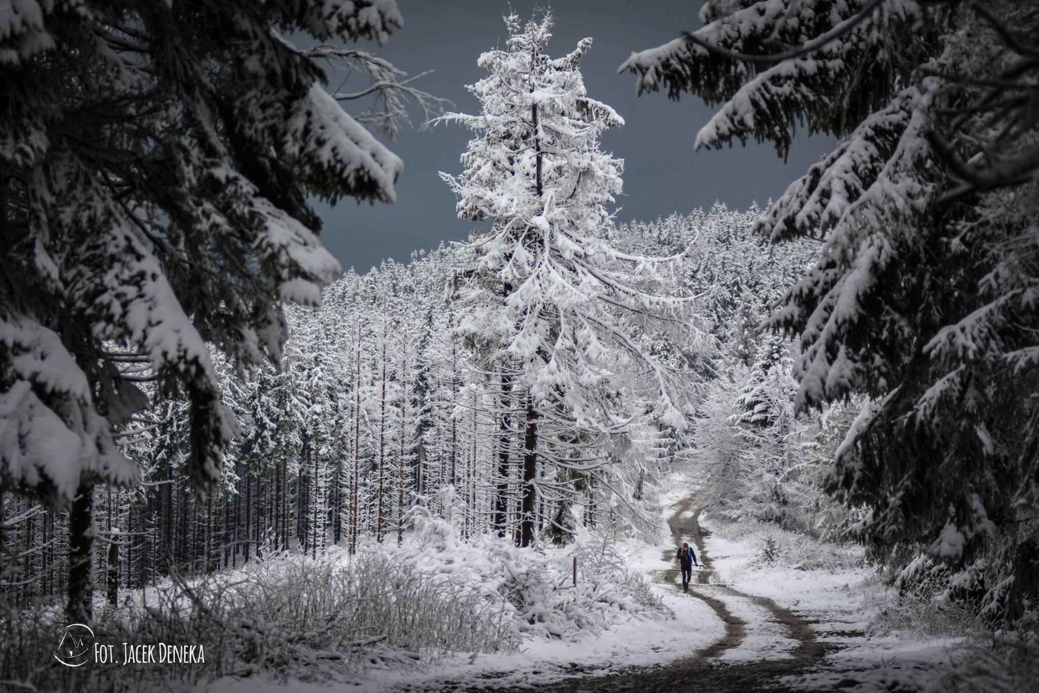 Trasa Piekła Czantorii jest bardzo malownicza, ale obfituje w błoto, kamienie i okrutne przewyższenia. Fot. Jacek Deneka