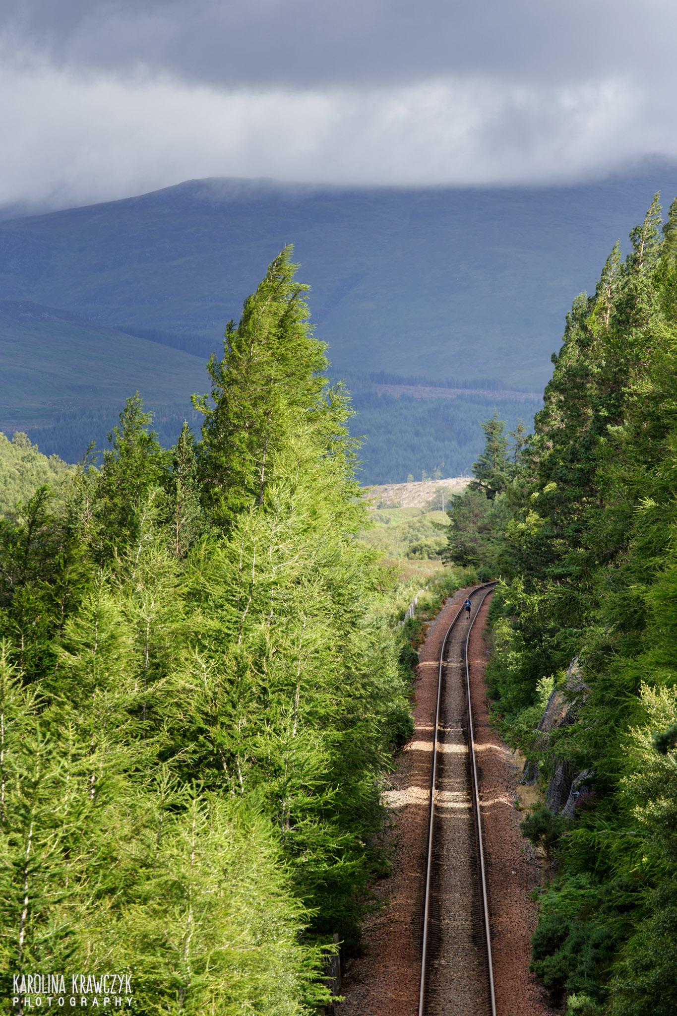 Linia kolejowa. Fot Karolina Krawczyk