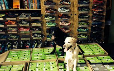 Nowy wystrój sklepu, inspirowany Sport Guru i ekipa, która spędzała w jego wnętrzu całkiem sporo czasu. Ultramaratończyk Eto i jego mama. Fot. Filip Bojko